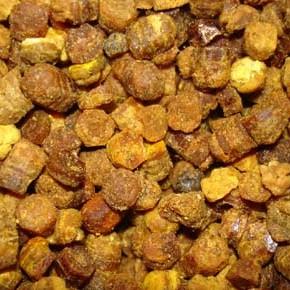 Bišu maize visiem